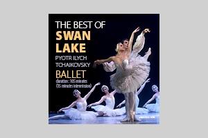 the best of swan lake 2015 logo
