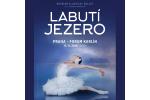 RUSSIAN CLASSICAL BALLET - LABUTÍ JEZERO/SWAN LAKE 9.11.2019, entradas en linea