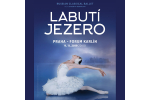 RUSSIAN CLASSICAL BALLET - LABUTÍ JEZERO/SWAN LAKE 9.11.2019,bilety online